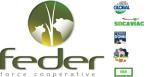 logo Groupe FEDER