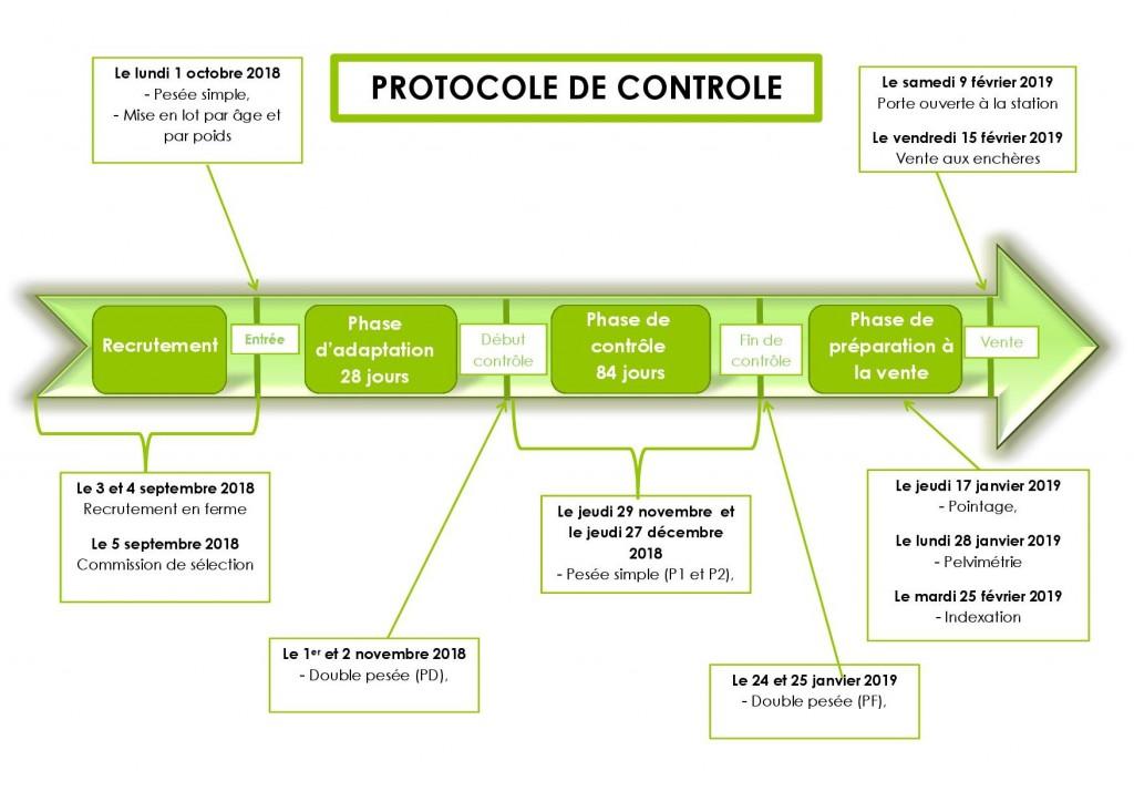 Frise protocole2018