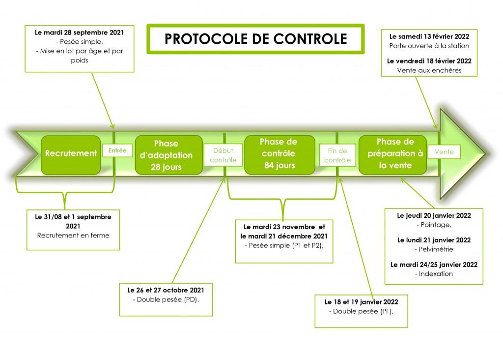 frise protocole 2021