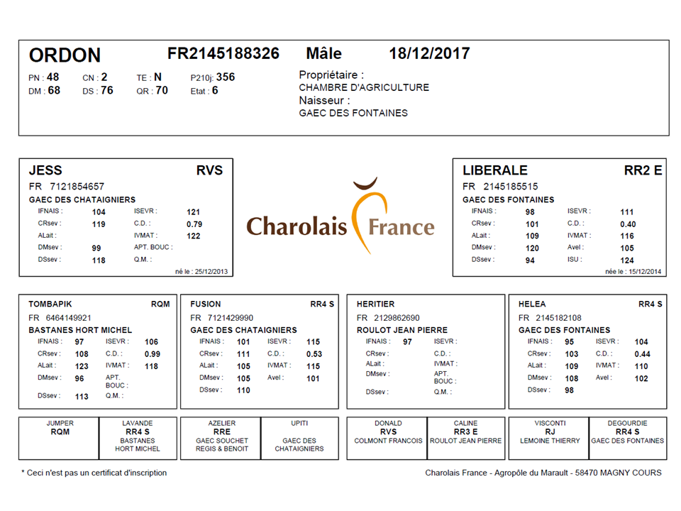 genealogie taureau charolais ORDON